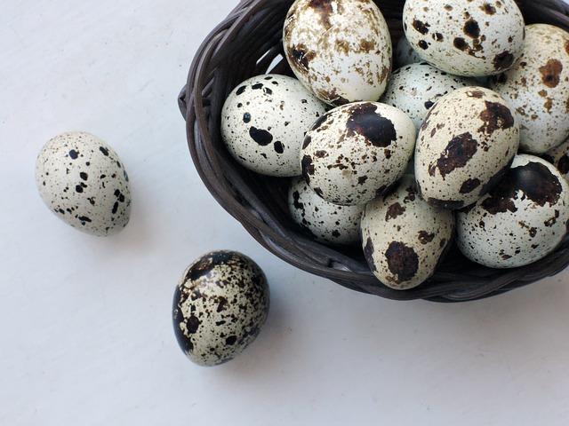 ouă de prepeliță